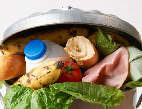 Le débat du mois : Que faire pour éviter le gaspillage alimentaire?